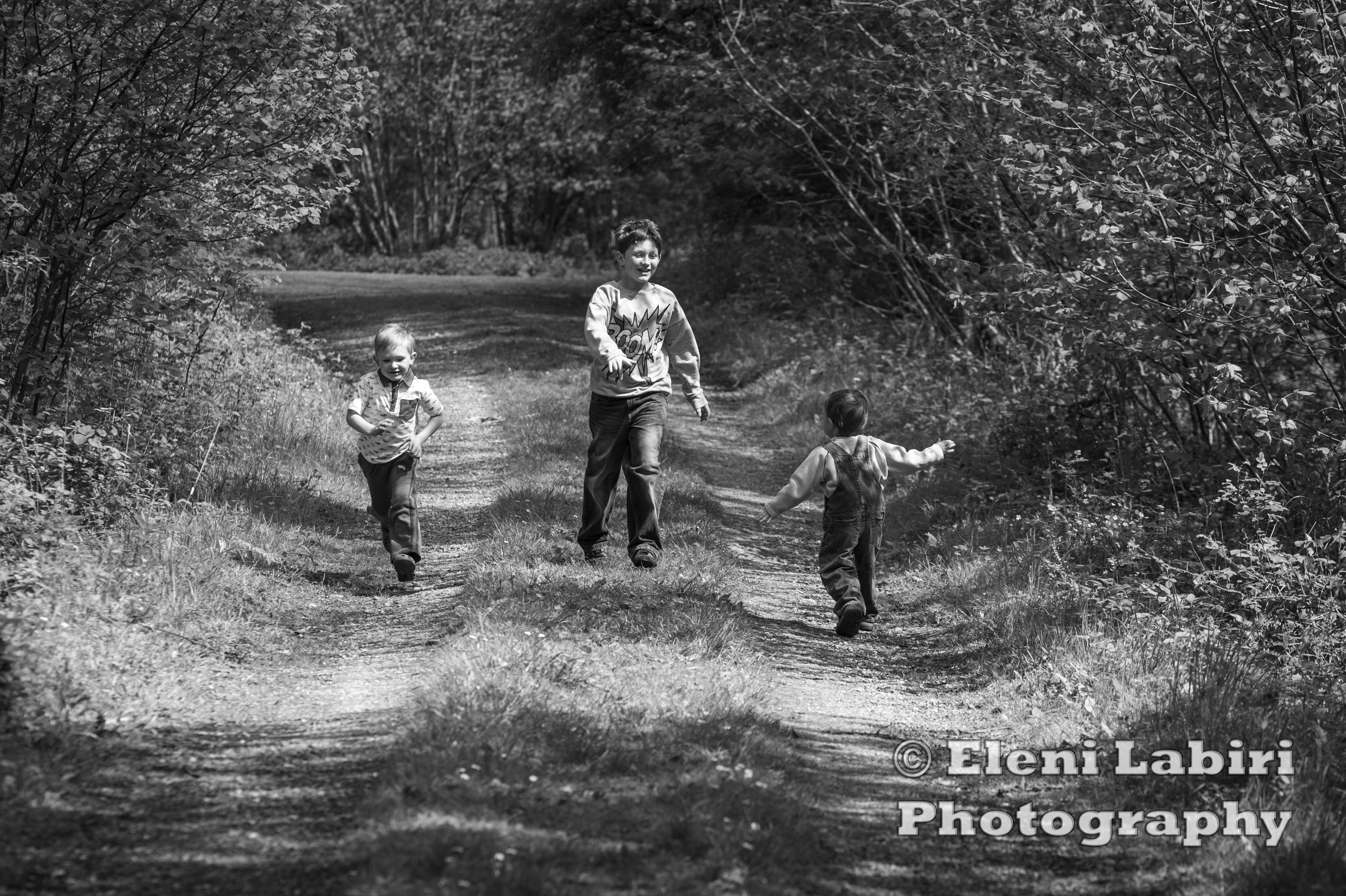 Forest1 copy posted in family fun monochrome outdoors photography tagged art black and white